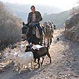 Mule Trail Kratovo, Macedonia